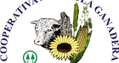 Mercado de Cereales 01/12/2020